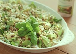 Sprouts and avocado salad