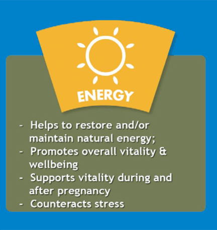 Strath Benefits Energy